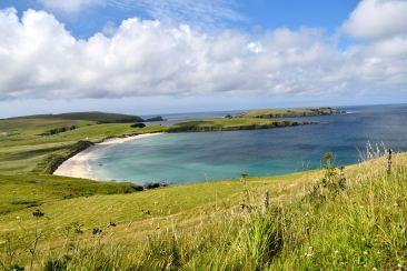 Strand på norra Shetland
