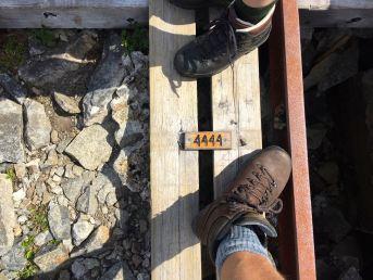 Världens längsta trätrappa i Flörli, 4 444 steg