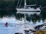 Årets första dopp. 5 grader i vattnet