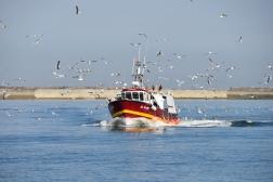 Fiskebåt vid Dieppe