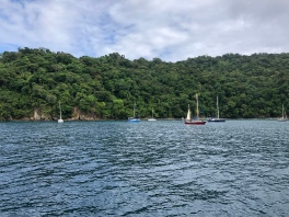 Framme på Tobago