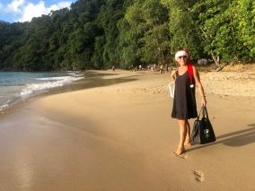 På väg till juldagsfirande