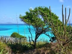 Utsikt Tobago Cays