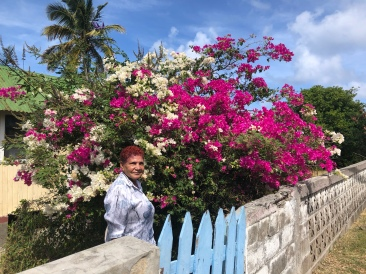 Bybo på Petite Martinique