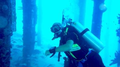 Vi dyker under kryssningsbryggan