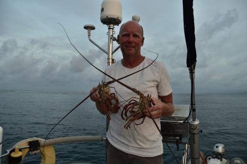 Lobster till middag