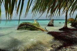 Klimatförändringarna gör att öarna försvinner